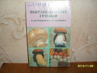 Выращивание набора грибов в домашних условиях 343
